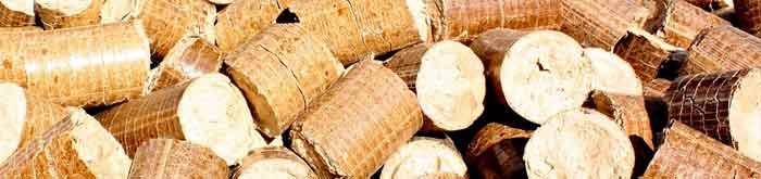 smaltimento legno roma