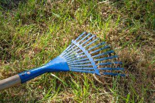 smaltimento erba tagliata